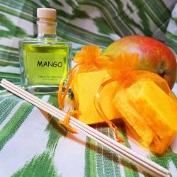 Mikado Mango 100ml